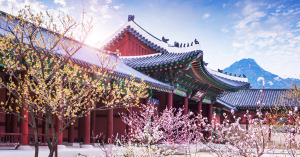 Gửi quà tết đi Hàn Quốc